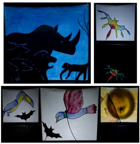 spectacle la minuscule, compagnie ABOUDBRAS, spectacle petite enfance, programme intervention petite enfance, les toiles de la nuit petite enfance, théâtre ombres petite enfance